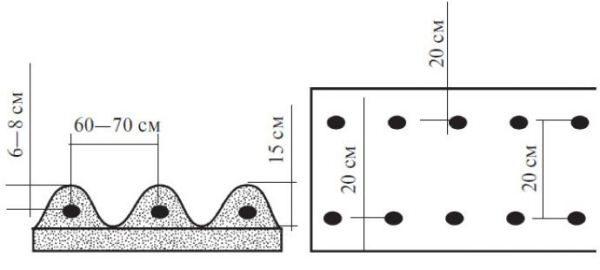 Схема посадки картофеля Импала