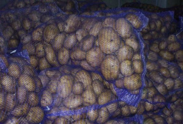 При правильных условиях зекура хранится 4-6 месяцев