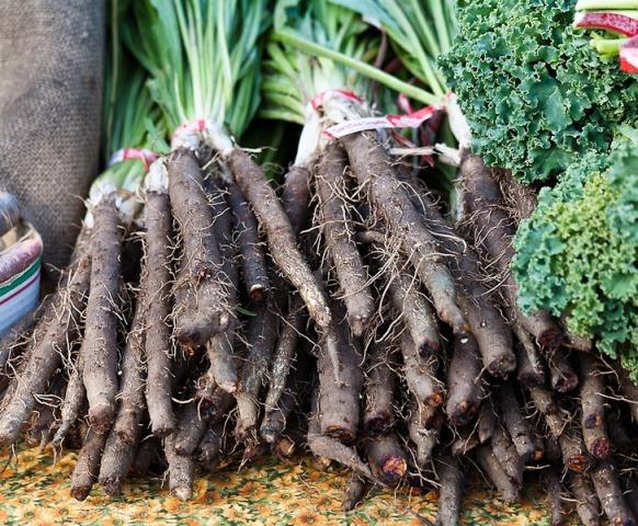 Собранный урожай черной моркови