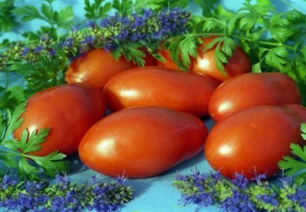 Томаты универсальные, они подходят для салатов, гарниров, супов и соусов