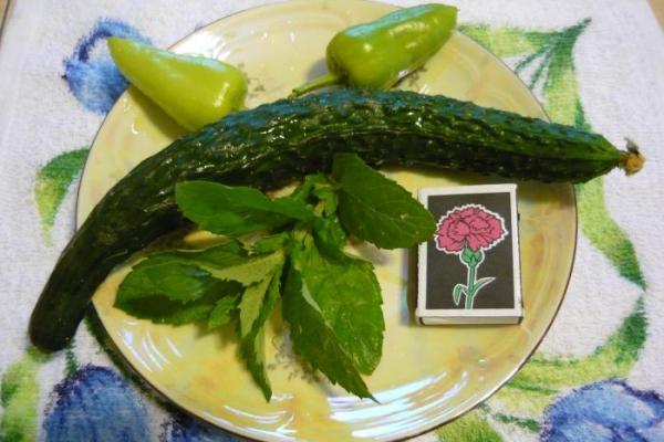 Сорт пригоден для употребления в свежем виде, а также для засолки
