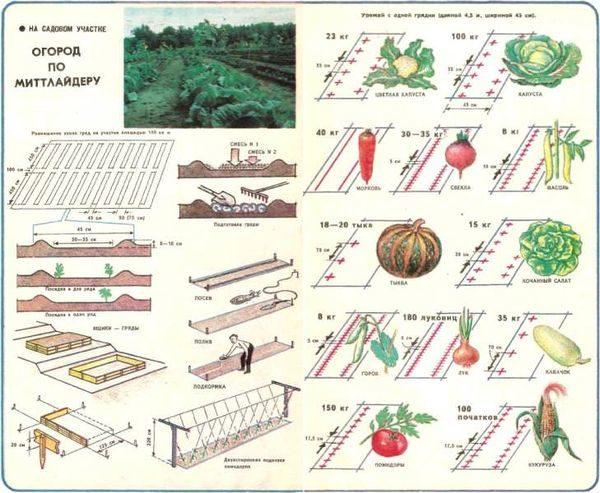 Схема посадки по Митлайдеру
