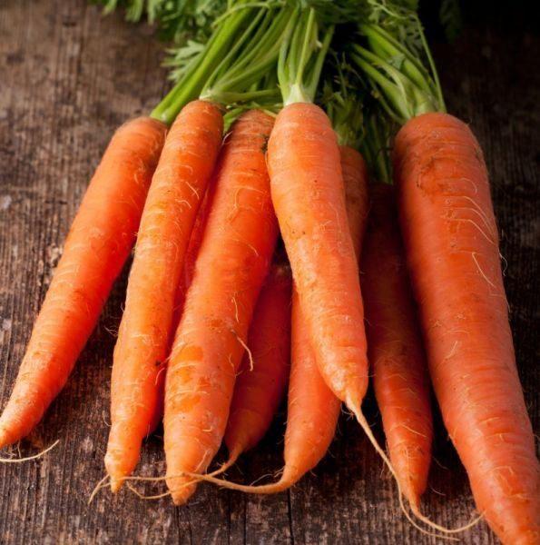 Сладкая морковь Каротан