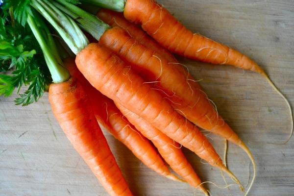 Чем полезна морковь для организма человека?
