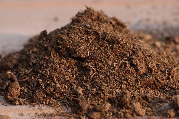 Если почва глинистая - ее разбавляют торфом