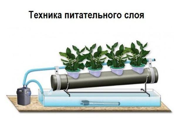 Гидропонная установка. как сделать