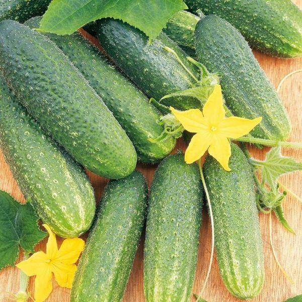 Средний вес плода составляет 120-150 грамм