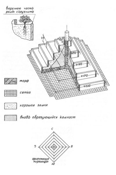 Чертеж пирамиды для клубники