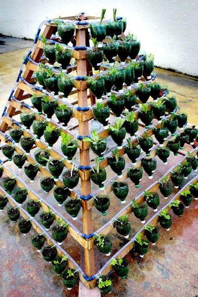 Пирамида из пластмассовых бутылок