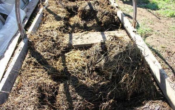 Подготовка насыщенного конским навозом грунта для парника