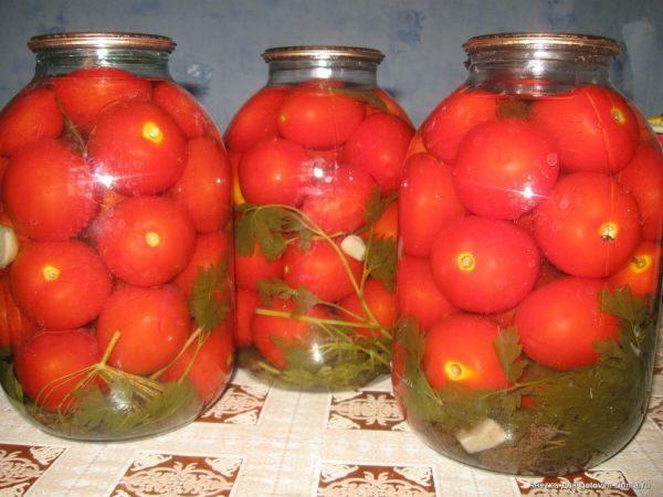 Консервированные помидоры сорт Андромеда