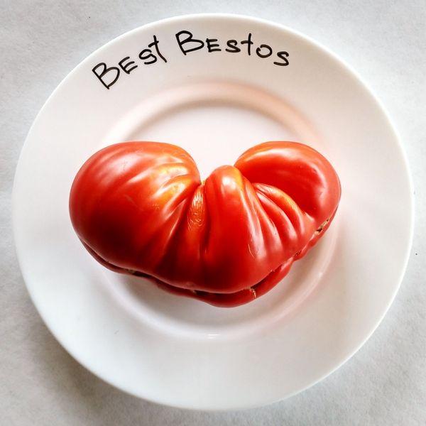 Best Bestos