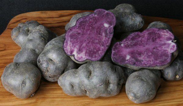 К фиолетовым сортам картофеля относятся те, которые имеют интенсивную окраску не только кожуры, но и мякоти