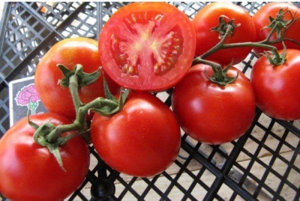 Томаты Загадка идеально подходят для салатов, соусов, очень хороши при цельноплодной засолке