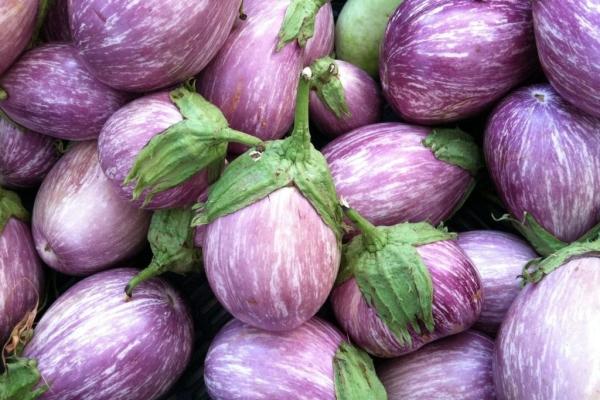 Баклажан - это богатая витаминами и минералами ягода, относящаяся к семейству пасленовых