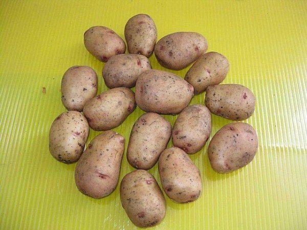 Картофель Аврора