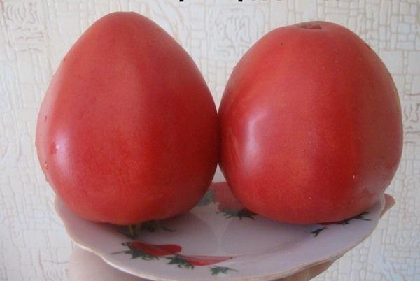 Вес плодов сорта колеблется от 300 до 1000 грамм
