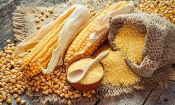 Кукурузная мука - универсальный продукт