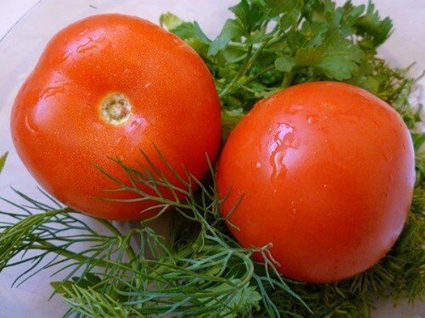 Ультраскороспелый сорт томатов Загадка