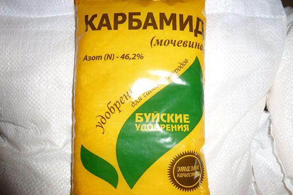 Овощ следует удобрять мочевиной и хлористым калием
