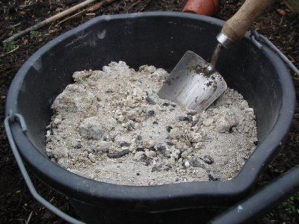 Трижды за сезон рекомендуется вносить удобрения: перегной, золу, суперфосфат