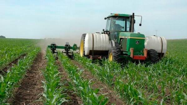 Листовая подкормка кукурузы карбамидом