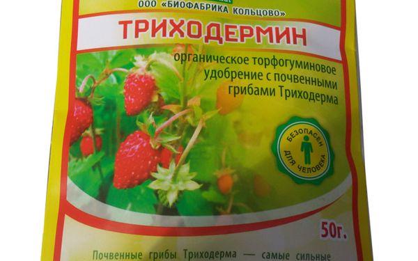 Для борьбы с грибковыми болезнями в почву вносят Триходермин