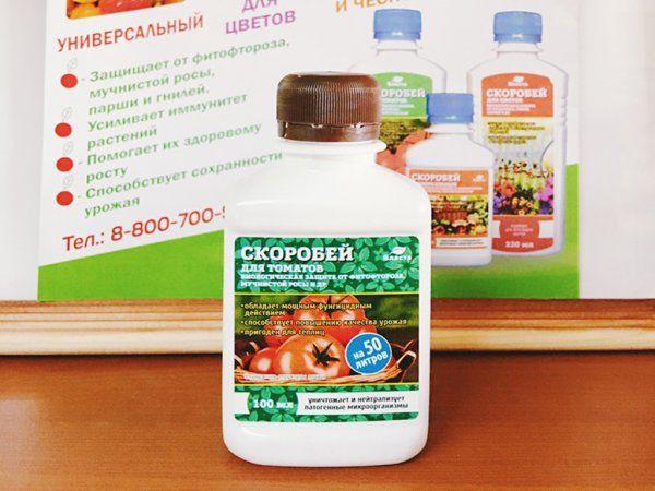 Кустам Дачника рекомендуется провести обработку от вредителей и болезней химическими средствами