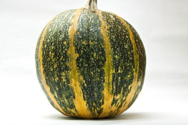 Средний вес плодов Голосемянки - около 7кг