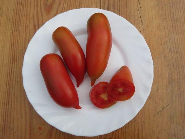 Плоды Хохломы имеют вес около 100-150 грамм и плотную структуру