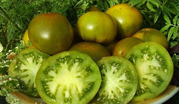 Вес плодов сорта около 250 грамм
