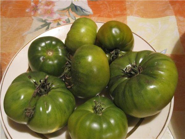 Массовый сбор урожая приходится на сентябрь