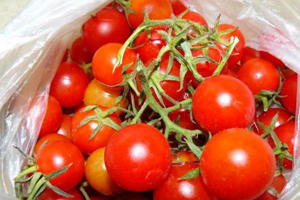 Плоды отличаются компактным размером и весят около 12-15 грамм каждый