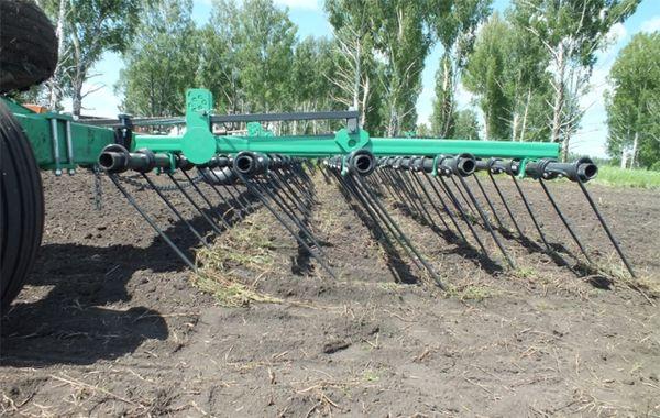 Боронование необходимо проводить до и после появления всходов кукурузы