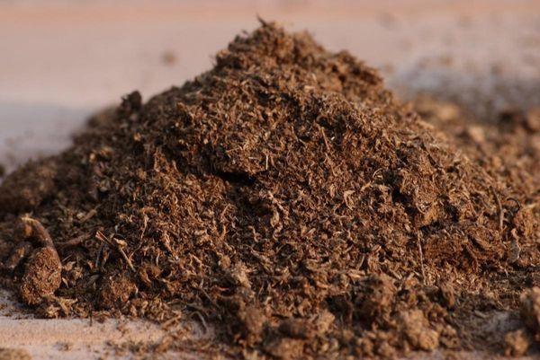 В качестве органического удобрения можно вносить торф с опилками