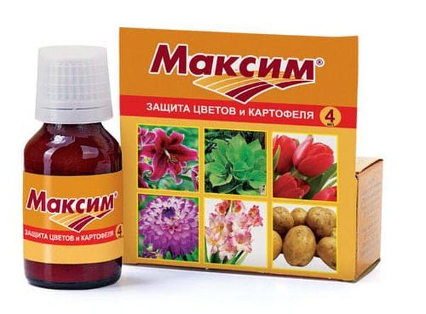 Препарат Максим для обработки клубней перед посадкой
