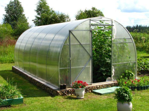 Подходящая теплица для выращивания дынь из поликарбоната