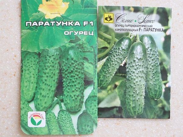 Семена огурца Паратунка