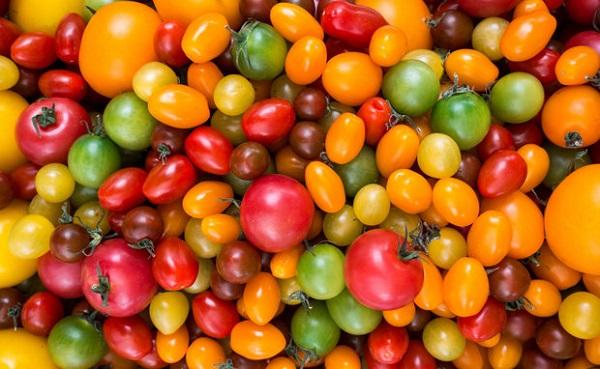 Описание и характеристика томатов - сливка