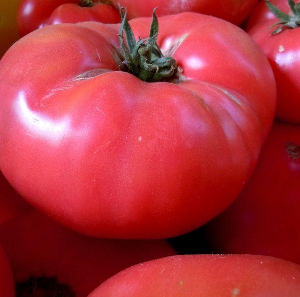 Плоды сорта считаются самыми вкусными среди розовых томатов