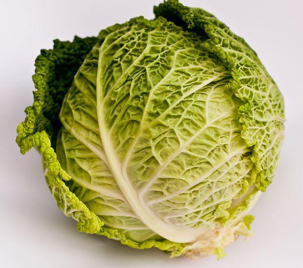 Вес кочана савойской капусты может достигать 3кг
