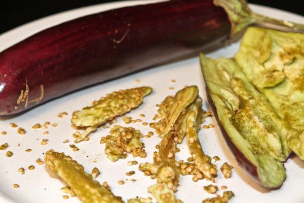 Условия выращивания рассады баклажанов в домашних условиях