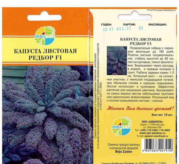 Выращивание листовой капусты