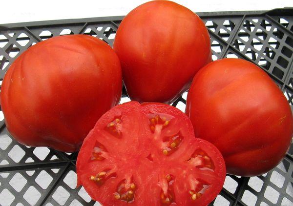 Вес плодов сорта составляет от 160 до 350 грамм