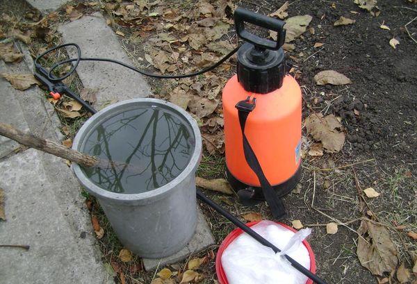 Для протравливания грунта необходимо использовать опрыскиватель с телескопическим брансбойтом