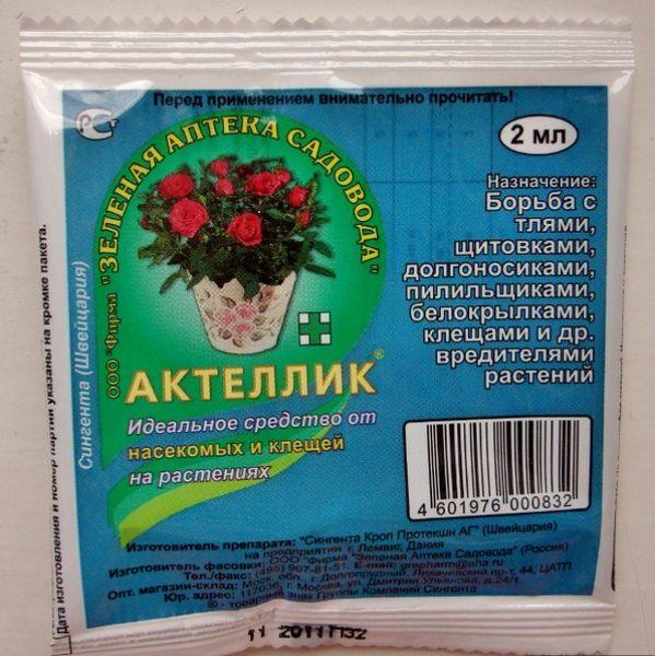 Для защиты огурцов от вредителей почва перед посадкой обрабатывается Актелликом