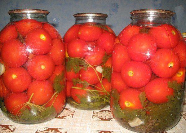 Небольшие плоды томата Клуша отлично подходят для консервирования