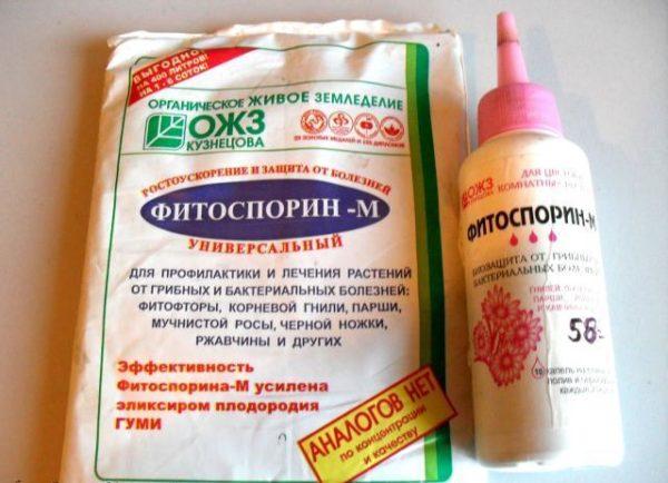 Фунгицид Фитоспорин-М выпускается в различных формах