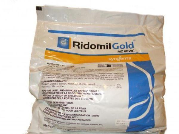 Ридомил Голд – качественный фунгицид для профилактики и лечения растений