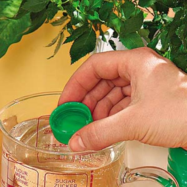 Разбавление в воде препарата превекур энерджи